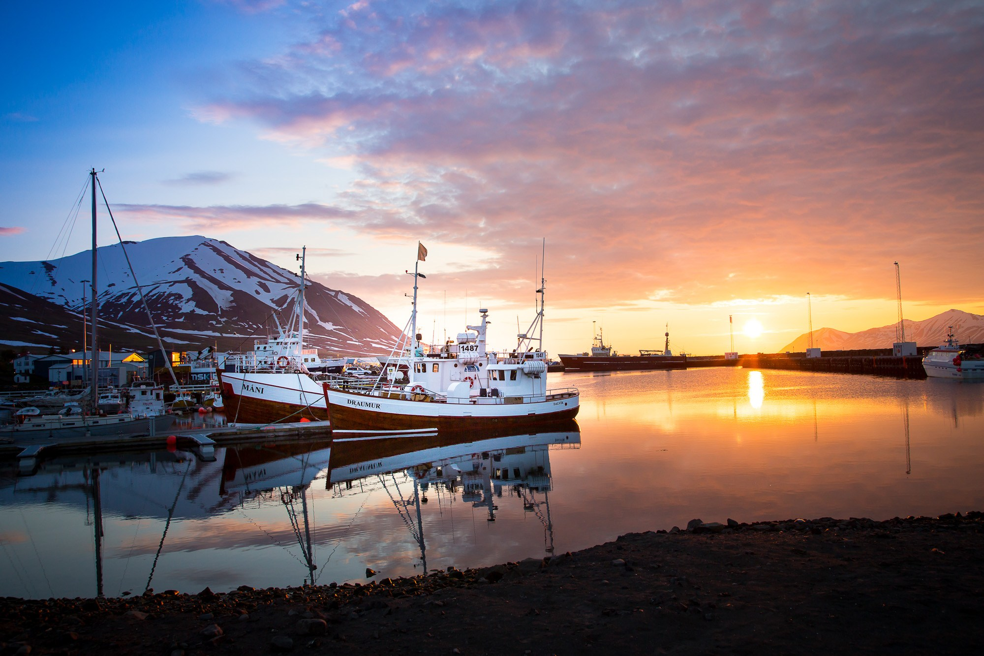 Whale Watching Dalvik in North of Iceland-