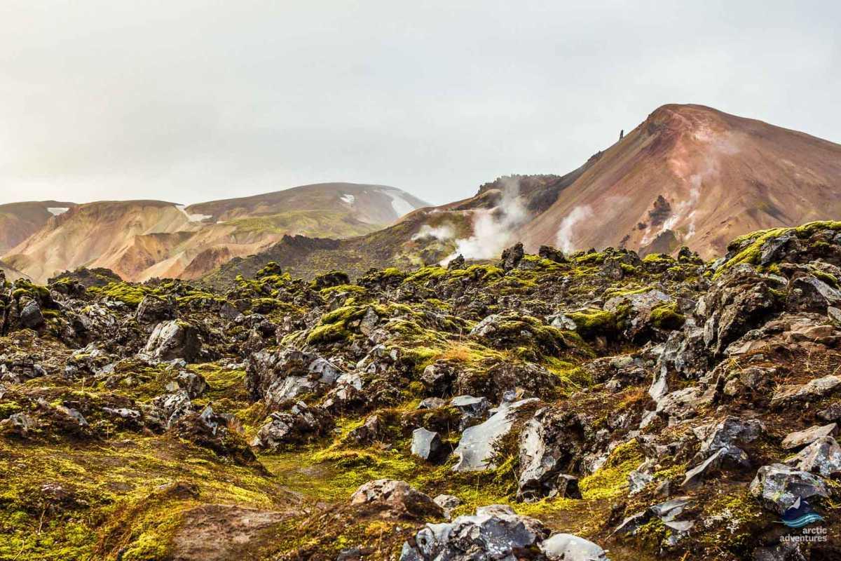 Iceland-Landmannalaugar- Laugavegur-hike-trekking-Brennisteinsalda(24)