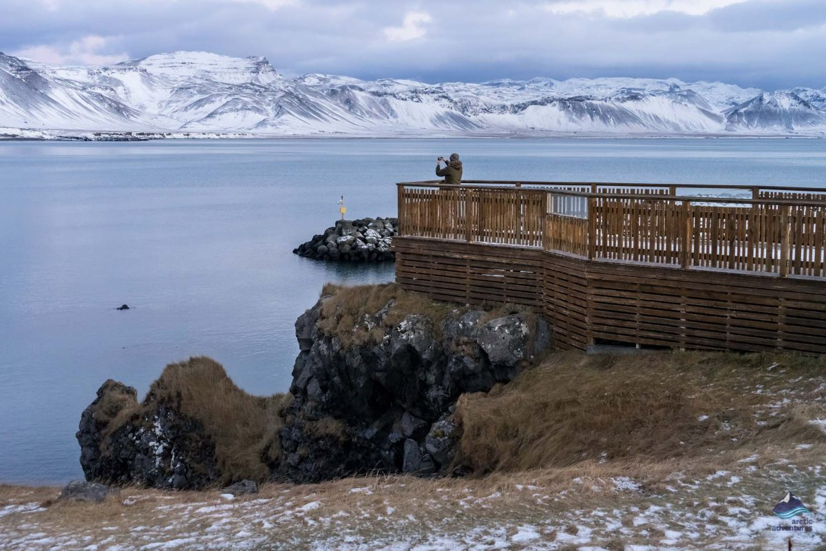 Arnarstapi Snaefellsnes Iceland
