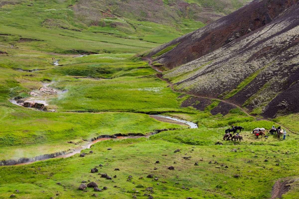 Horse-riding-Reykjadalur-Iceland
