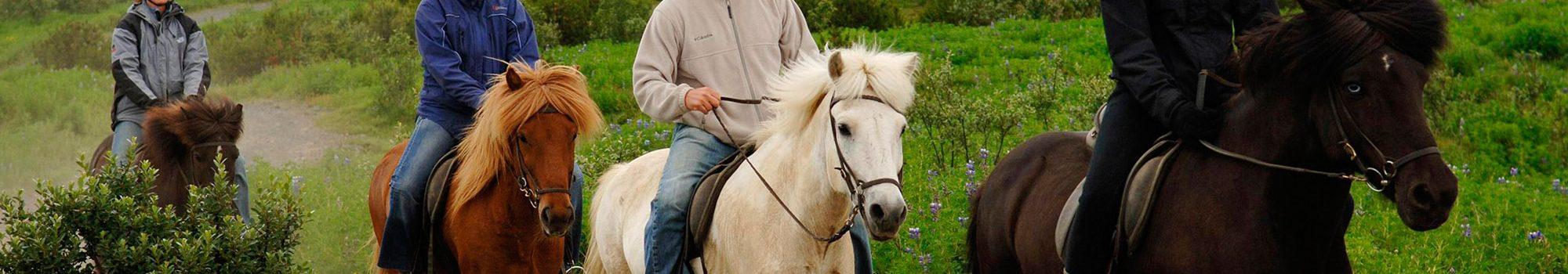 Horse-riding-tour-Iceland