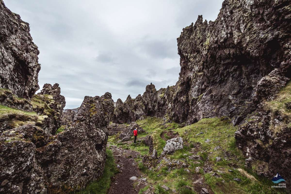 Snaefellsnes-West-Iceland-tour-lava-rocks