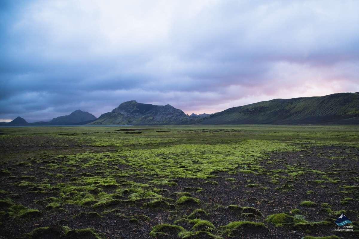 alftavatn-trail-Laugavegur-Iceland