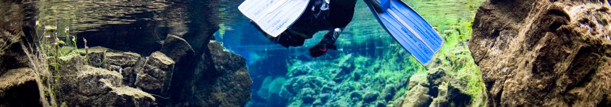 Snorkeling-tour-Silfra-Thingvellir-Iceland