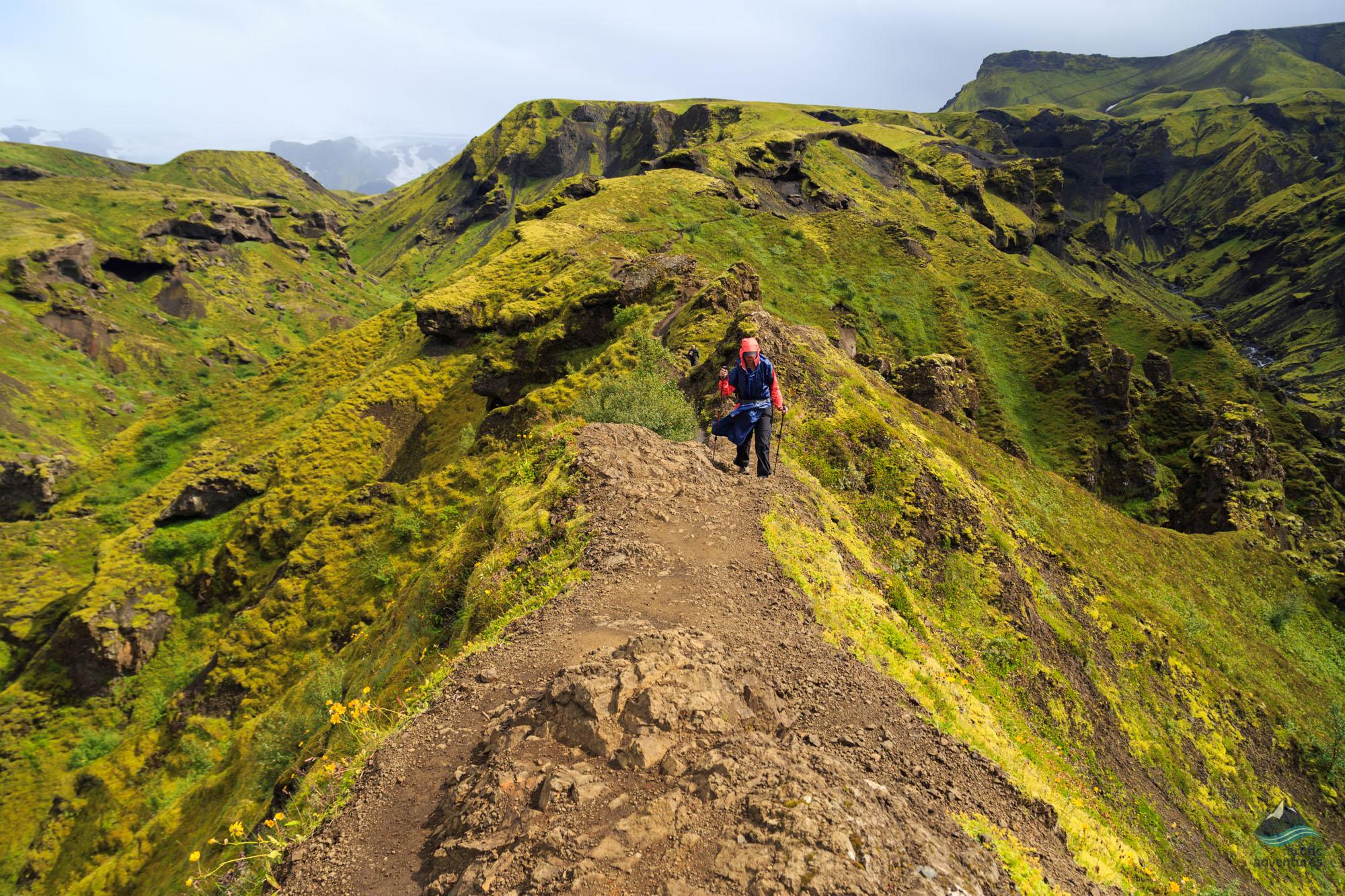 Go To Iceland Tours