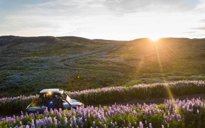 buggy-tour-iceland
