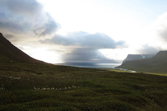 Hornstrandir Iceland views