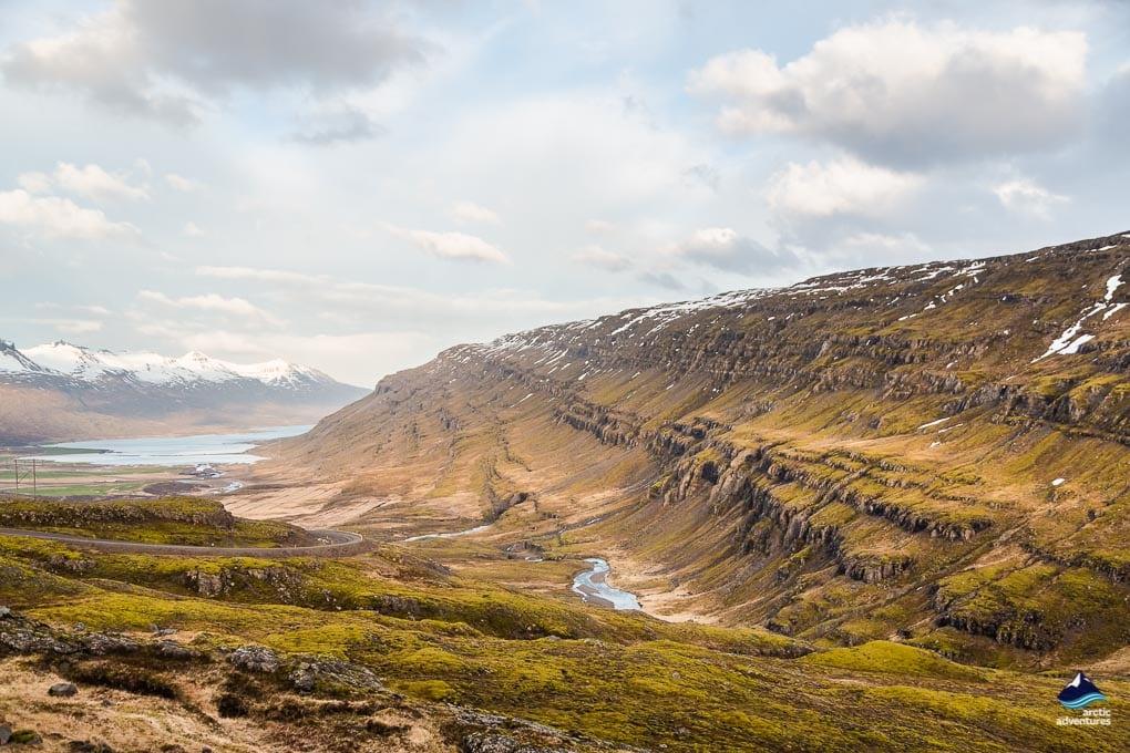 East Fjord Views