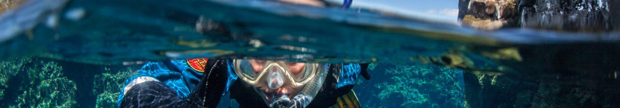 snorkeling à silfra