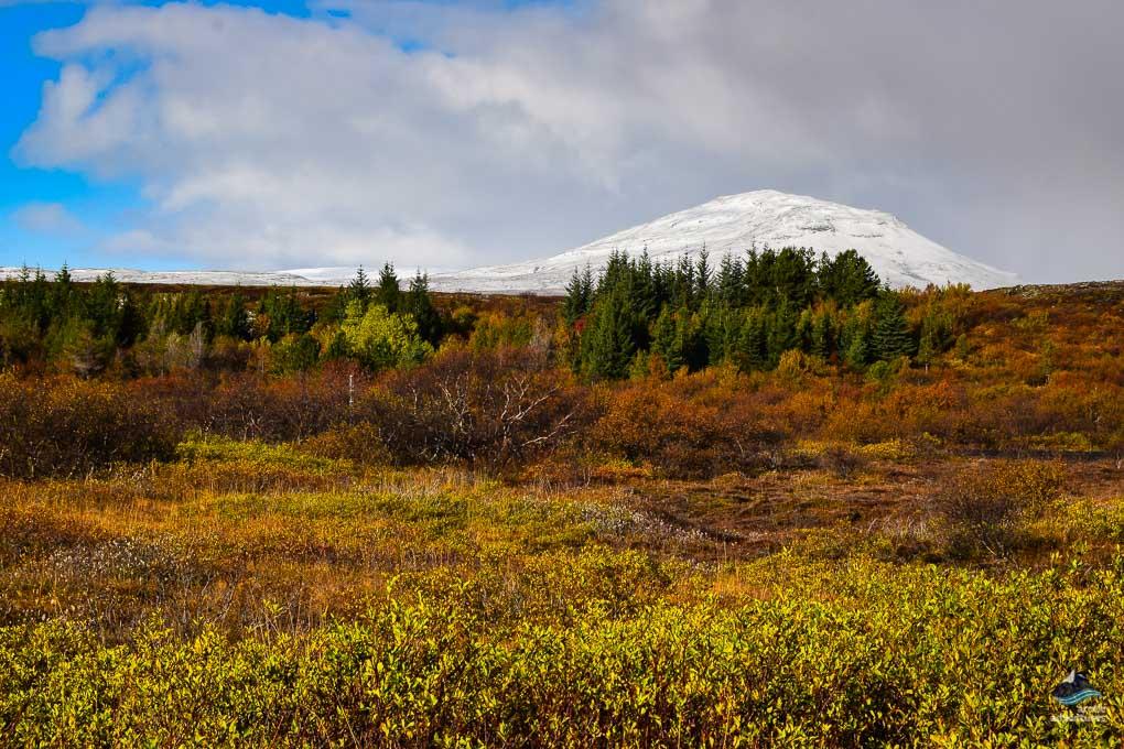 Thingvellir view of Hekla