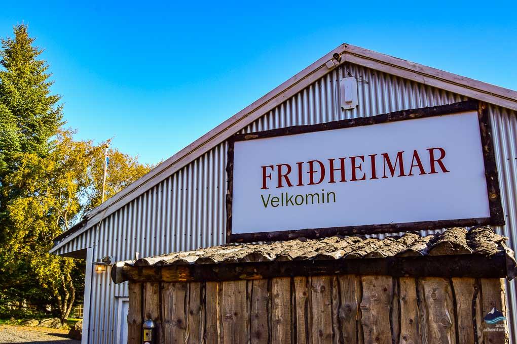 Fridheimar Tomato Farm