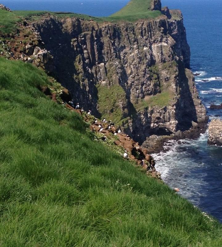 Sea Cliffs at Grimsey