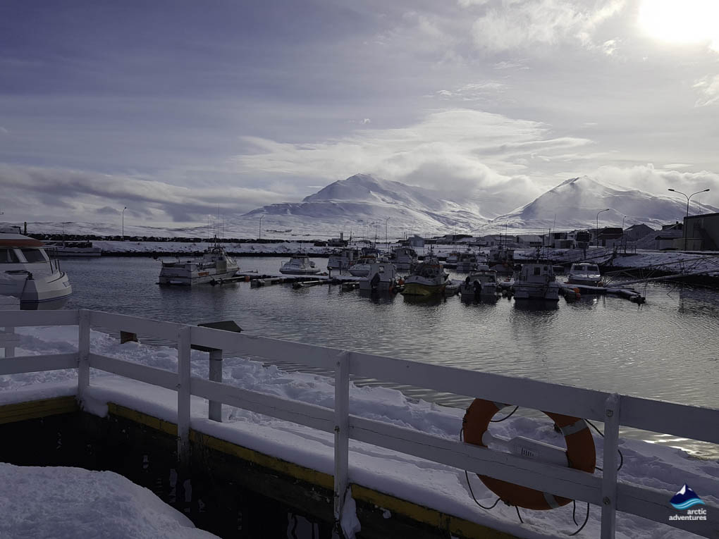 Dalvik's harbor