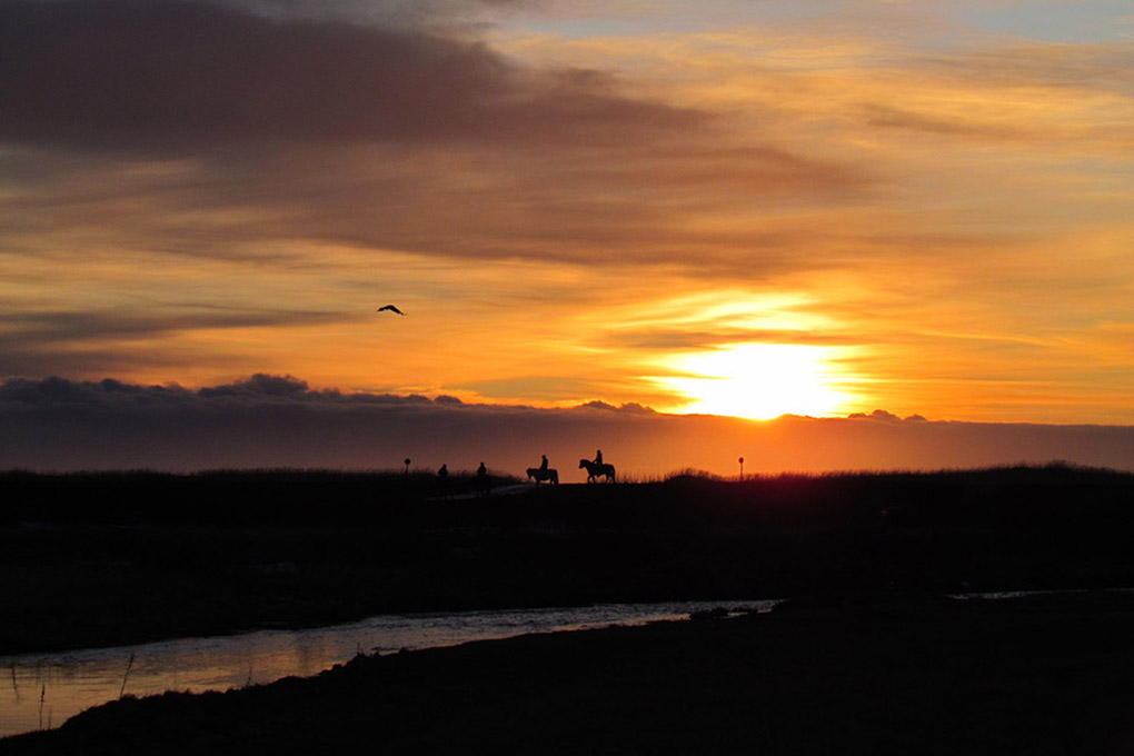 sun rising during horse riding