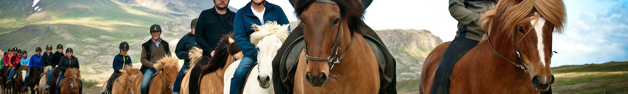 horse-rid