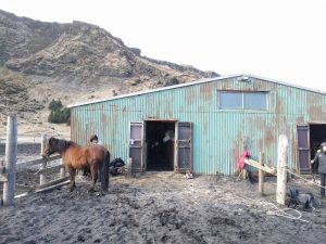 Vik Horse Adventure stables