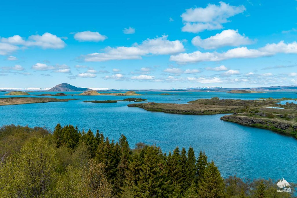 Lake Myvatn Geothermal Area