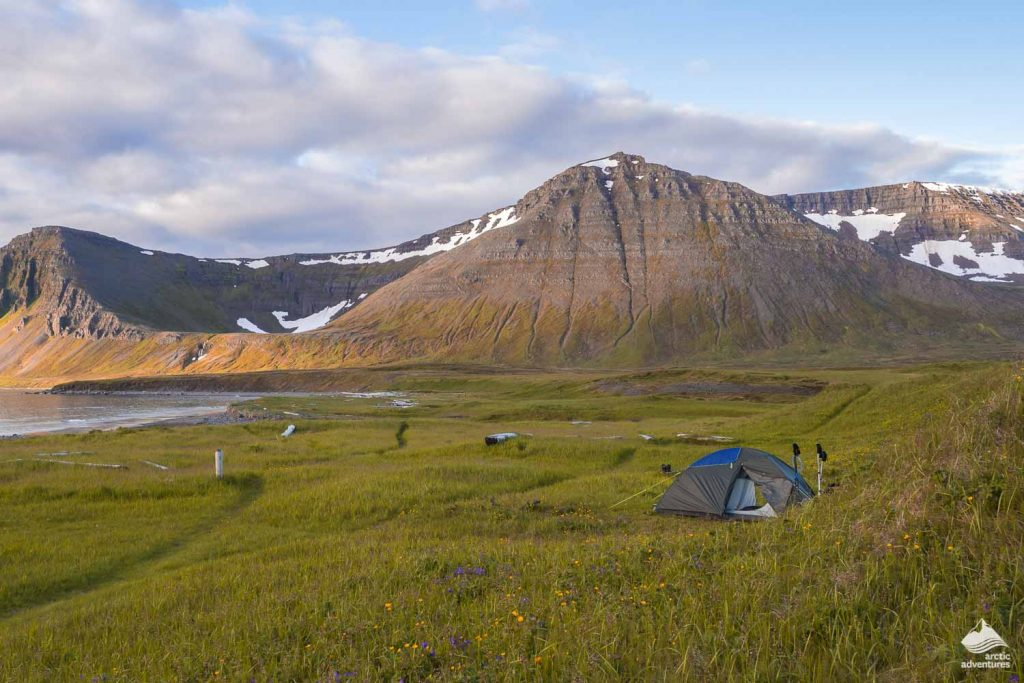 A lone tent pitched on the Hornstrandir Campgrounds